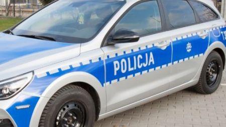 Do zdarzenia doszło przed godz. 16 w miejscowości Głosków (pow. piaseczyński) (fot. policja.pl)