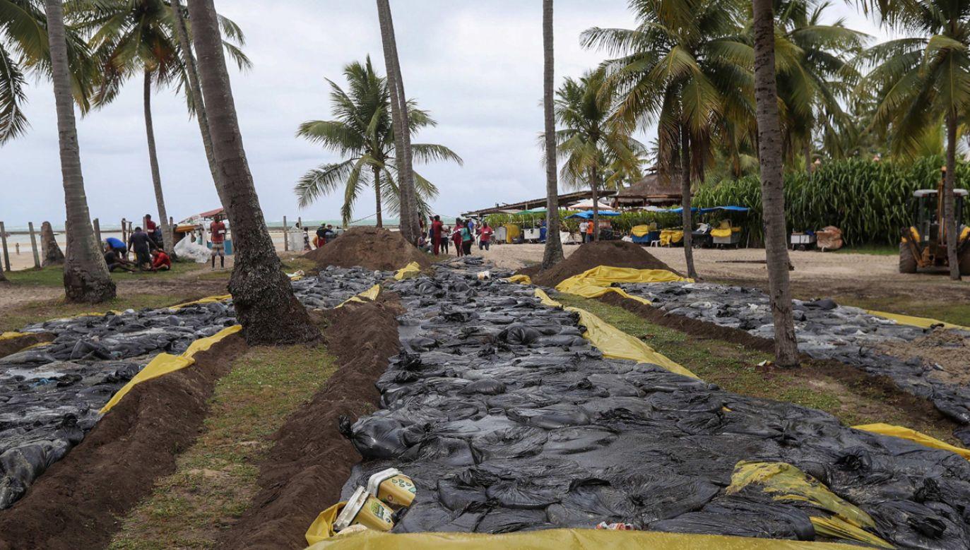 Ochotnicy ręcznie usuwają pływające u brzegu łaty olejowe, które zagrażają całej plaży (fot. PAP/EPA/CARLOS EZEQUIEL VANNONI )