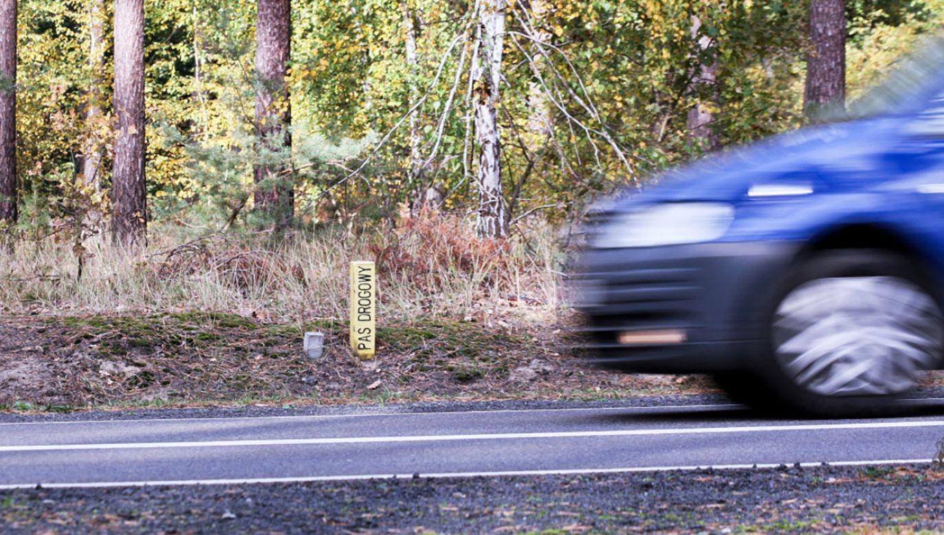 Pościg pijanego kierowcy na Śląsku (fot. PAP/Lech Muszyński, zdjęcie ilustracyjne)