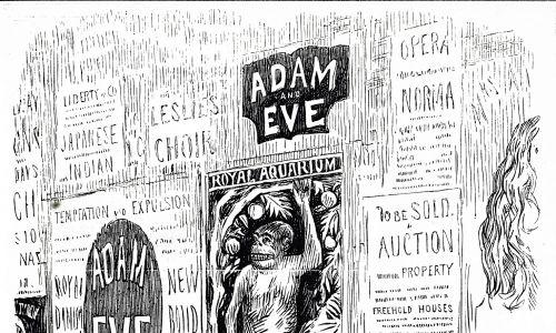 Karykatura z 1878 roku, będąca pamfletem na teorię Charlesa Darwinsa (darwinizm), że ludzie są potomkami lub są spokrewnieni z małpami. Fot. Universal History Archive / Universal Images Group via Getty Images