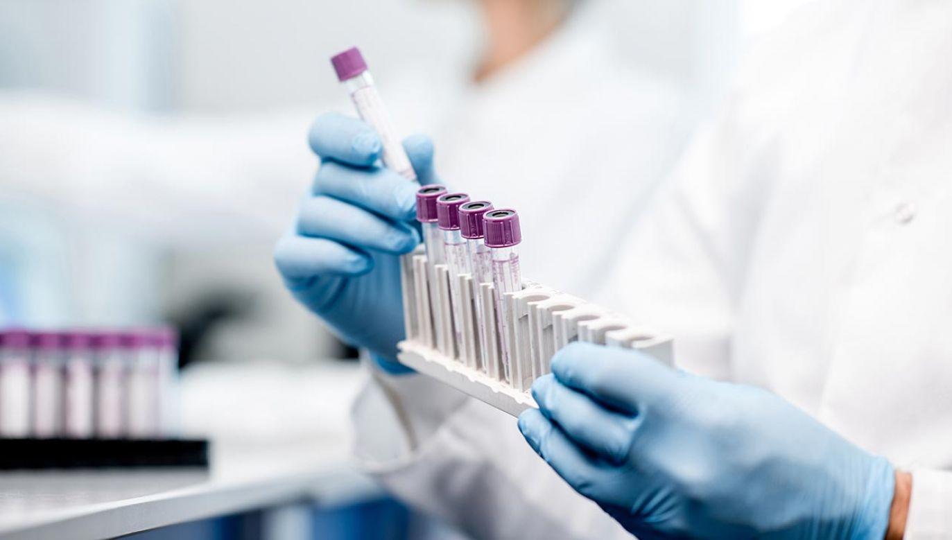 Polskie badania nad lekiem na COVID-19 (fot. Shutterstock/RossHelen)