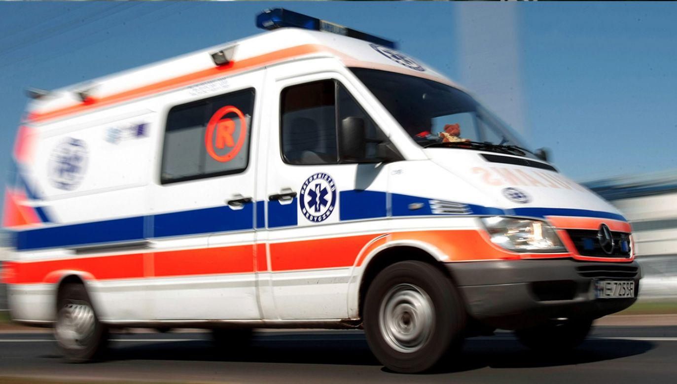 Obydwaj poszkodowani zostali przewiezieni do szpitali w Brzegu i Opolu (fot. arch. PAP)
