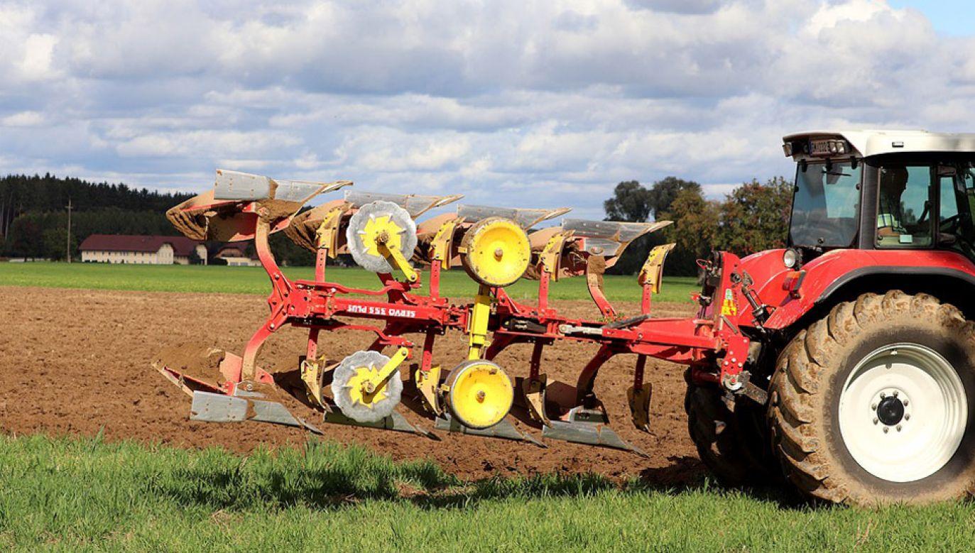Polska sprzeciwia się cięciom w polityce spójności i rolnictwie (fot. Pixabay/wafr)