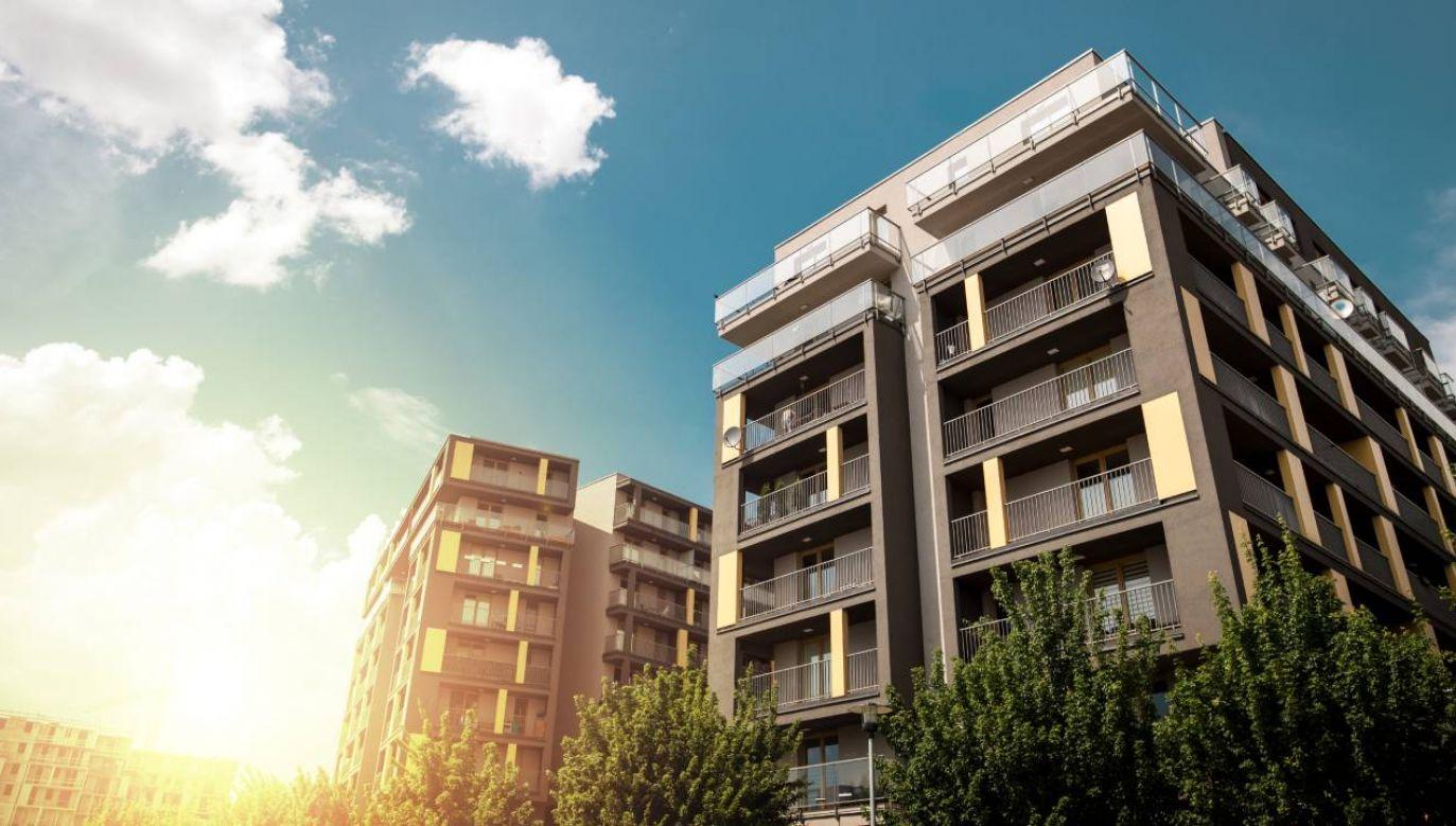 Ustawa przewiduje również stworzenie w BGK Rządowego Funduszu Mieszkaniowego (fot. Shutterstock/guteksk7)