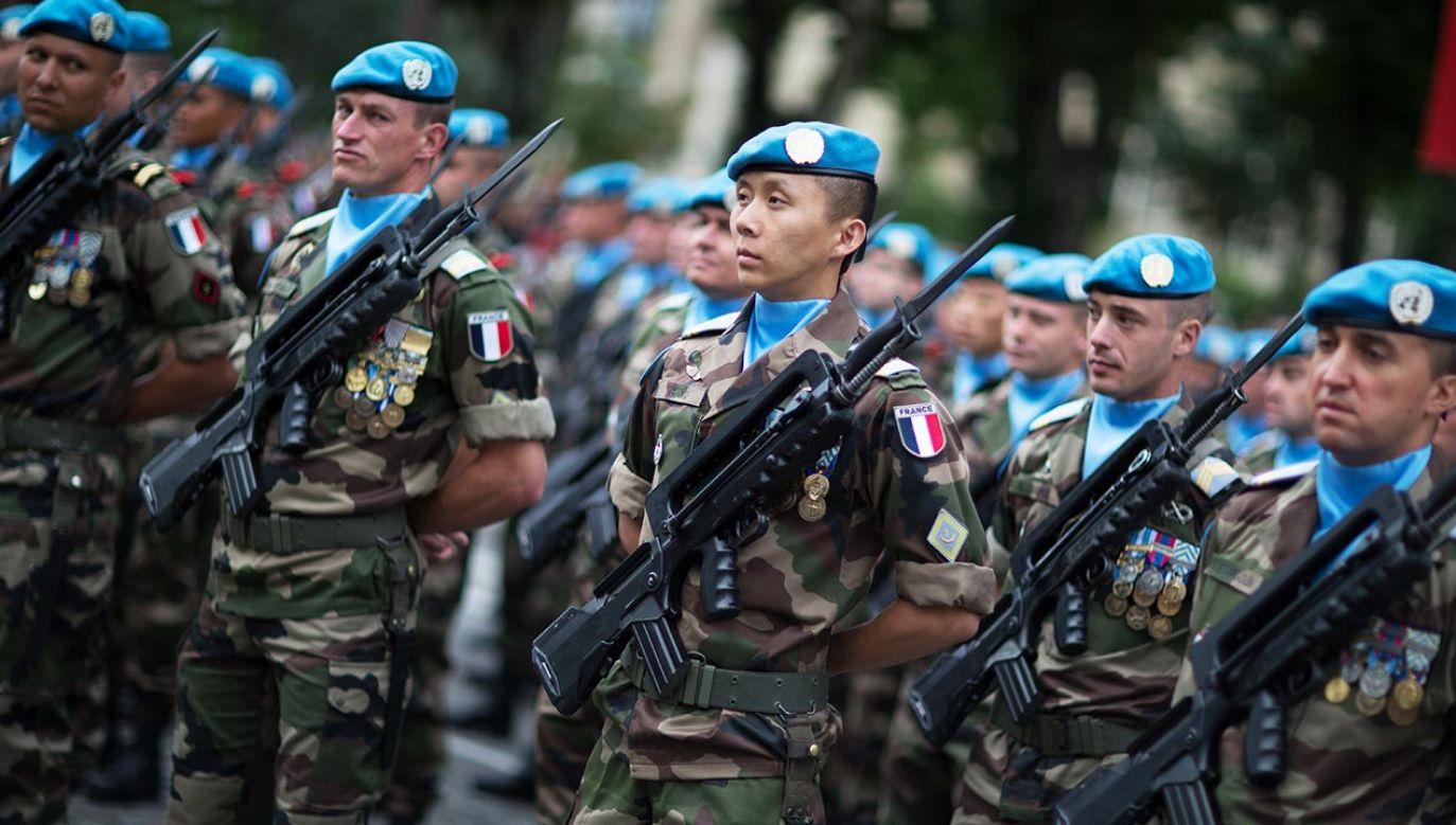 Francji niepodoba się zaangażowanie Turcji w wojnę domową w Libii (fot. Shutterstock/DreamSlamStudio)