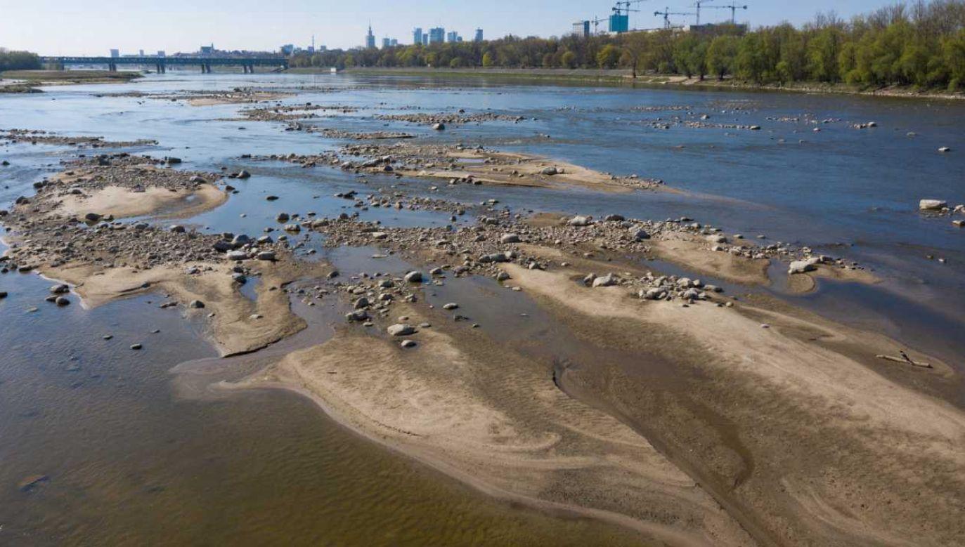 iski poziom wody w Wiśle w pobliżu Mostu Gdańskiego w Warszawie (fot. PAP/Leszek Szymański)