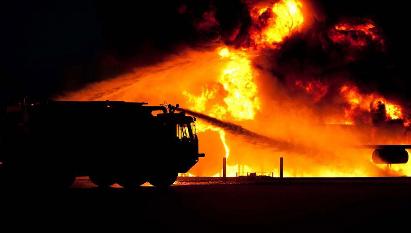 W kulminacyjnym momencie ogień gasiło 30 zastępów (fot. pixabay/12019)