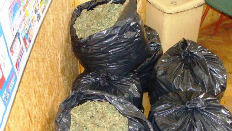 Narkotyki przejęte przez CBŚP (fot. CBŚP)