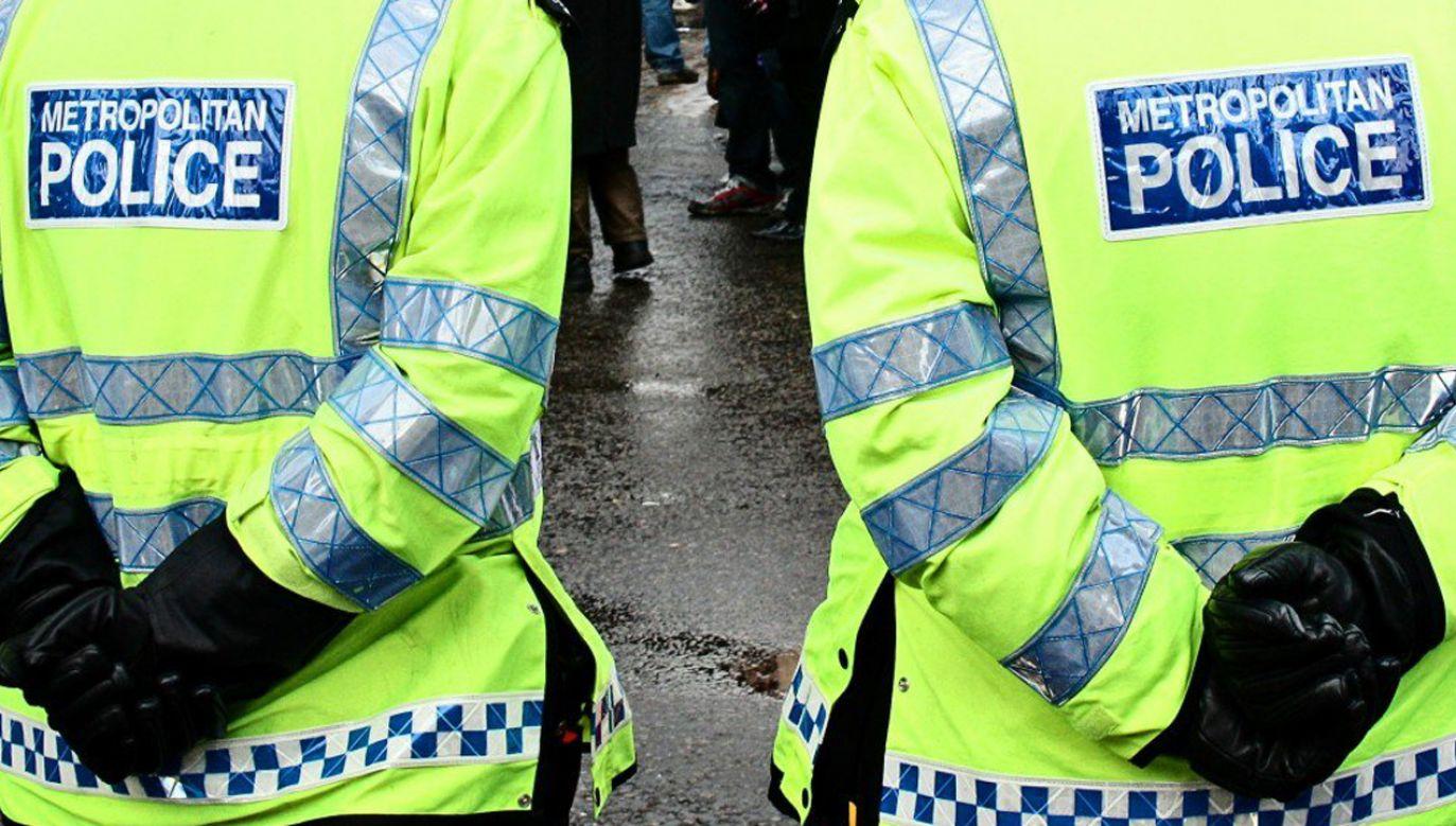 Hakerzy włamali się do systemu dystrybucyjnego londyńskiej policji (fot. Twitter/@metpoliceuk)