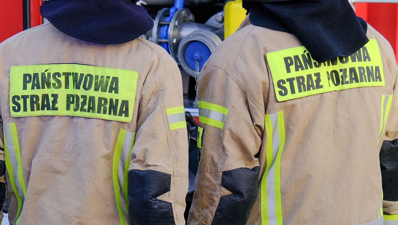 Na czas akcji służb z budynku ewakuowano siedmiu lokatorów (fot. Shutterstock)