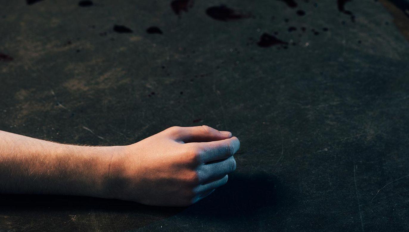 Ciało 23-latka zostało przewiezione do zakładu medycyny sądowej (fot. Shutterstock/LightField Studios)