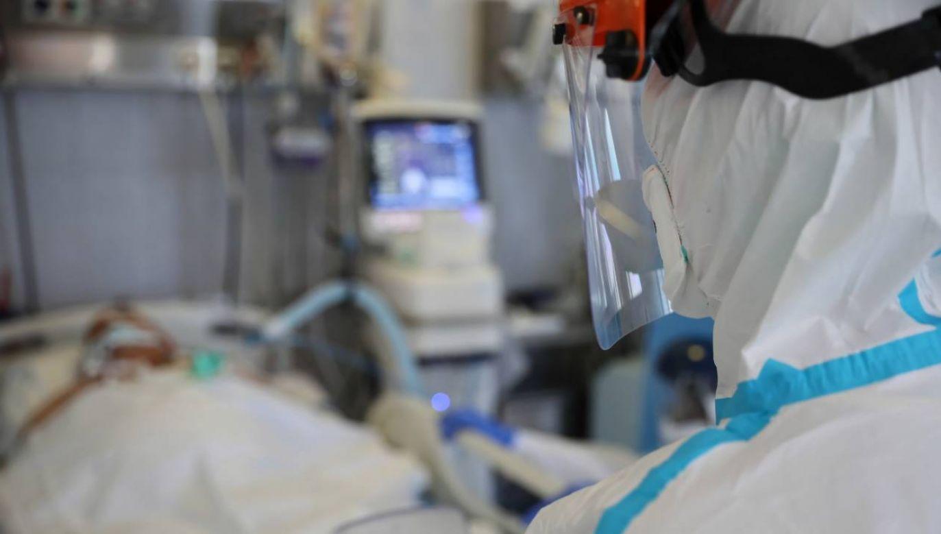 Nowe dane o epidemii (fot.PAP/Leszek Szymański)