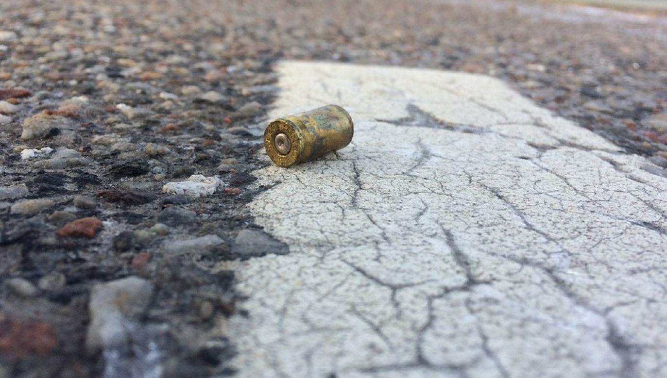 RPA ma jeden z najwyższych odsetek zabójstw na świecie (fot. Pixabay/glukan)