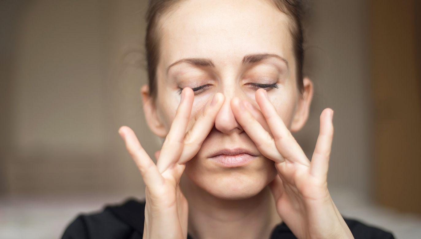 Węch jest szczególnie wyczulony na zagrożenie (fot. Shutterstock/Shumytskaya Olga)
