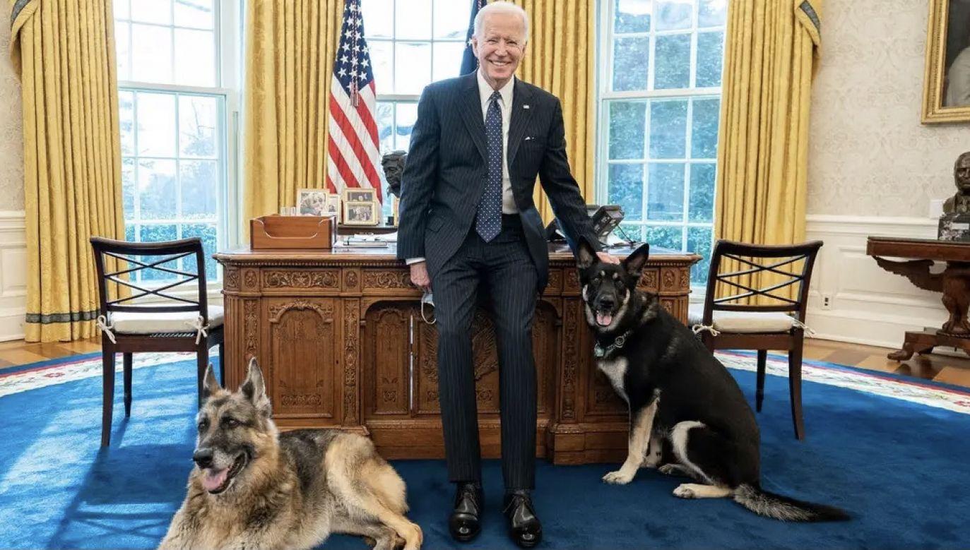 To już kolejny incydent (fot. Adam Schulz/White House)