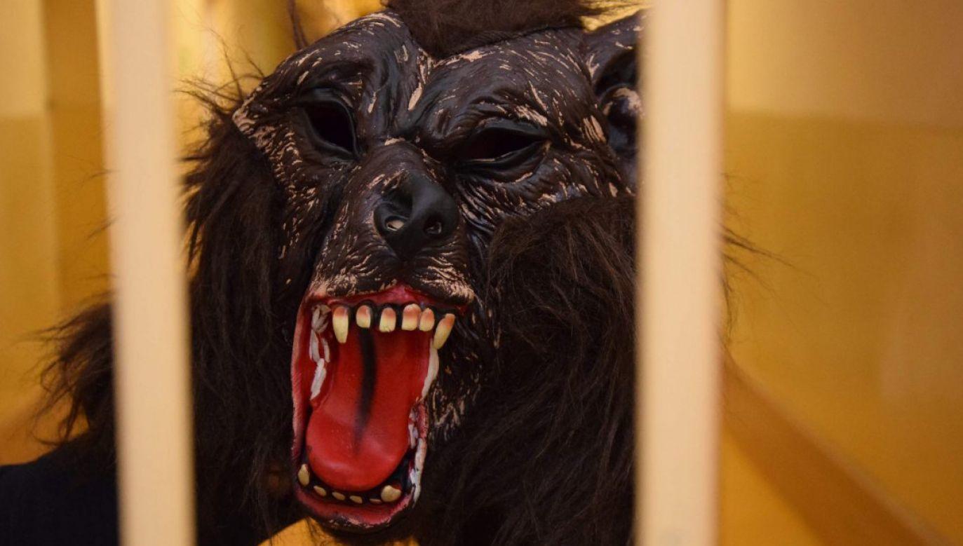 2-letni mężczyzna pożyczył od wnuka maskę wilkołaka (fot. kwp Olsztyn)