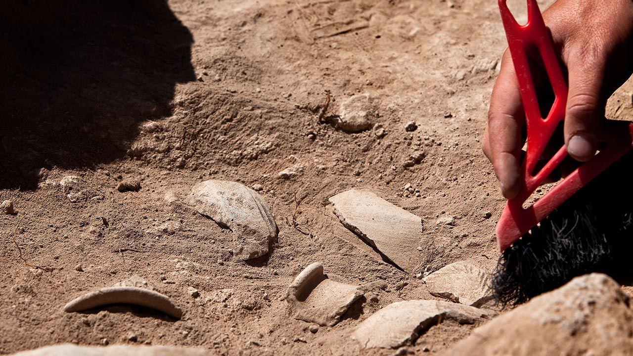 Archeolodzy odkryli grobowce w Delcie Nilu (fot. Shutterstock/Openfinal, zdjęcie ilustracyjne)