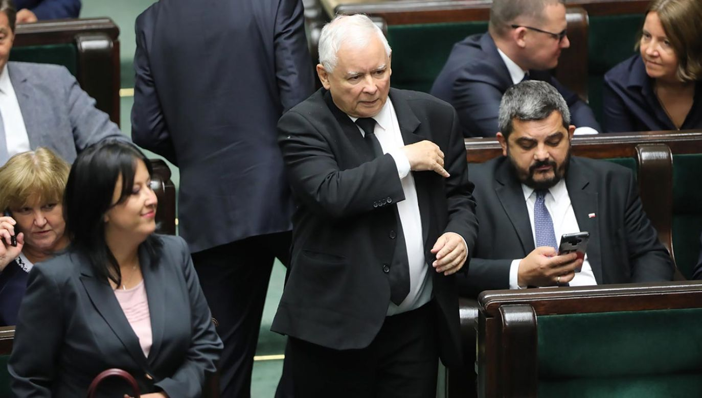 Sejm przyjął ustawę prozwierzętę, ale część ZP była przeciw (fot. PAP/Wojciech Olkuśnik)