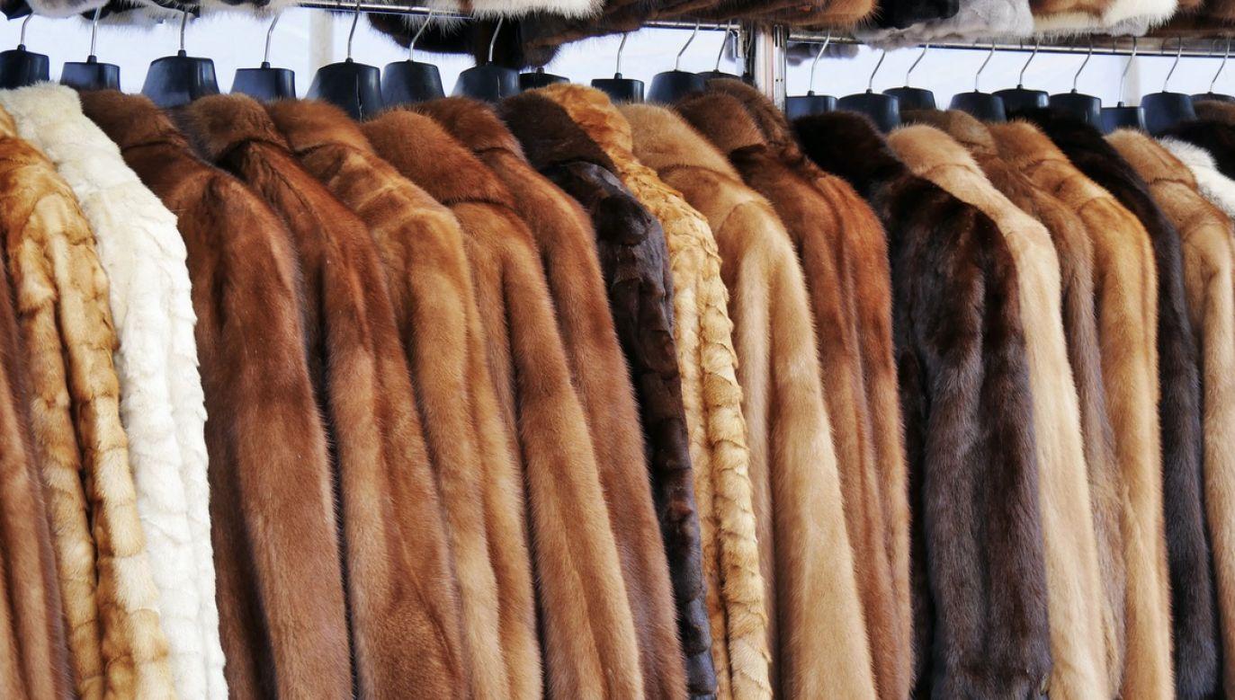 Wyraźna większość Polaków opowiada się za zakazem hodowli zwierząt na futra (fot. Shutterstock/Whiteaster)
