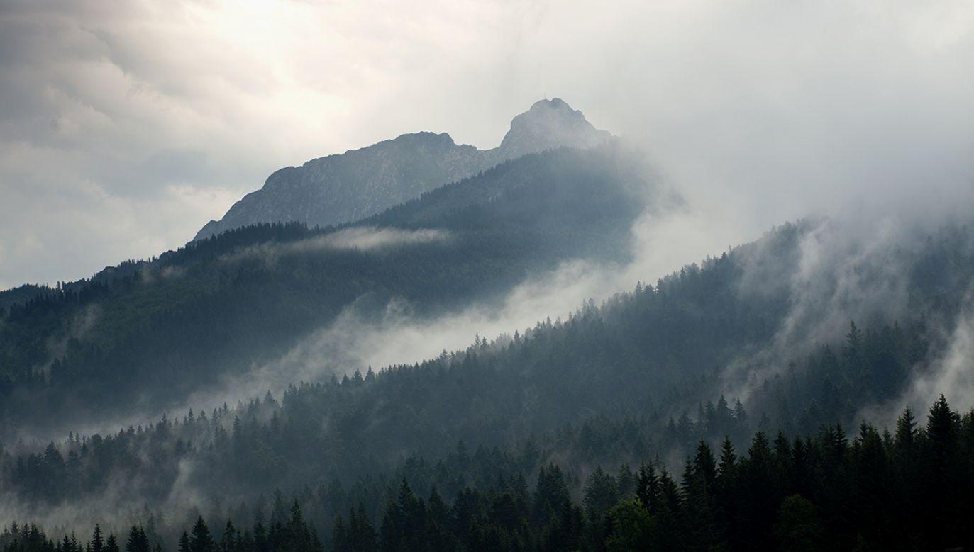 TOPR odradza wyprawy w góry osobom niedoświadczonym (fot. Shutterstock/ Miro Novak)