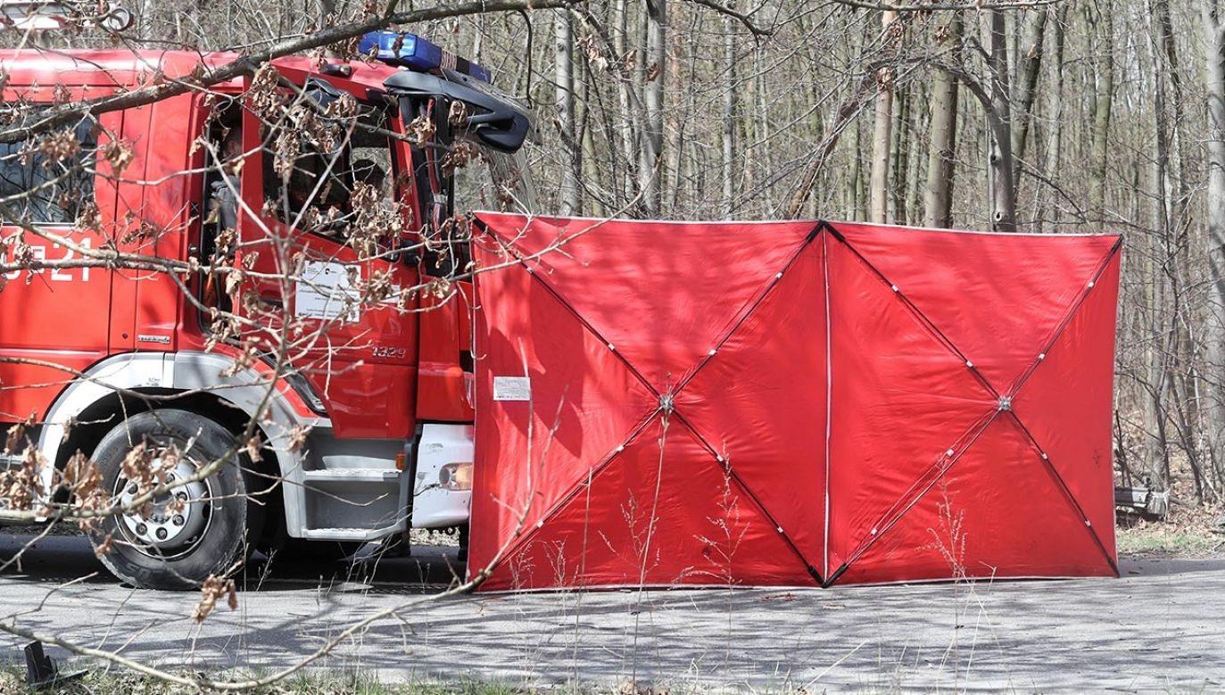 Zderzenie busa z ciągnikiem (fot. PAP/Roman Zawistowski)