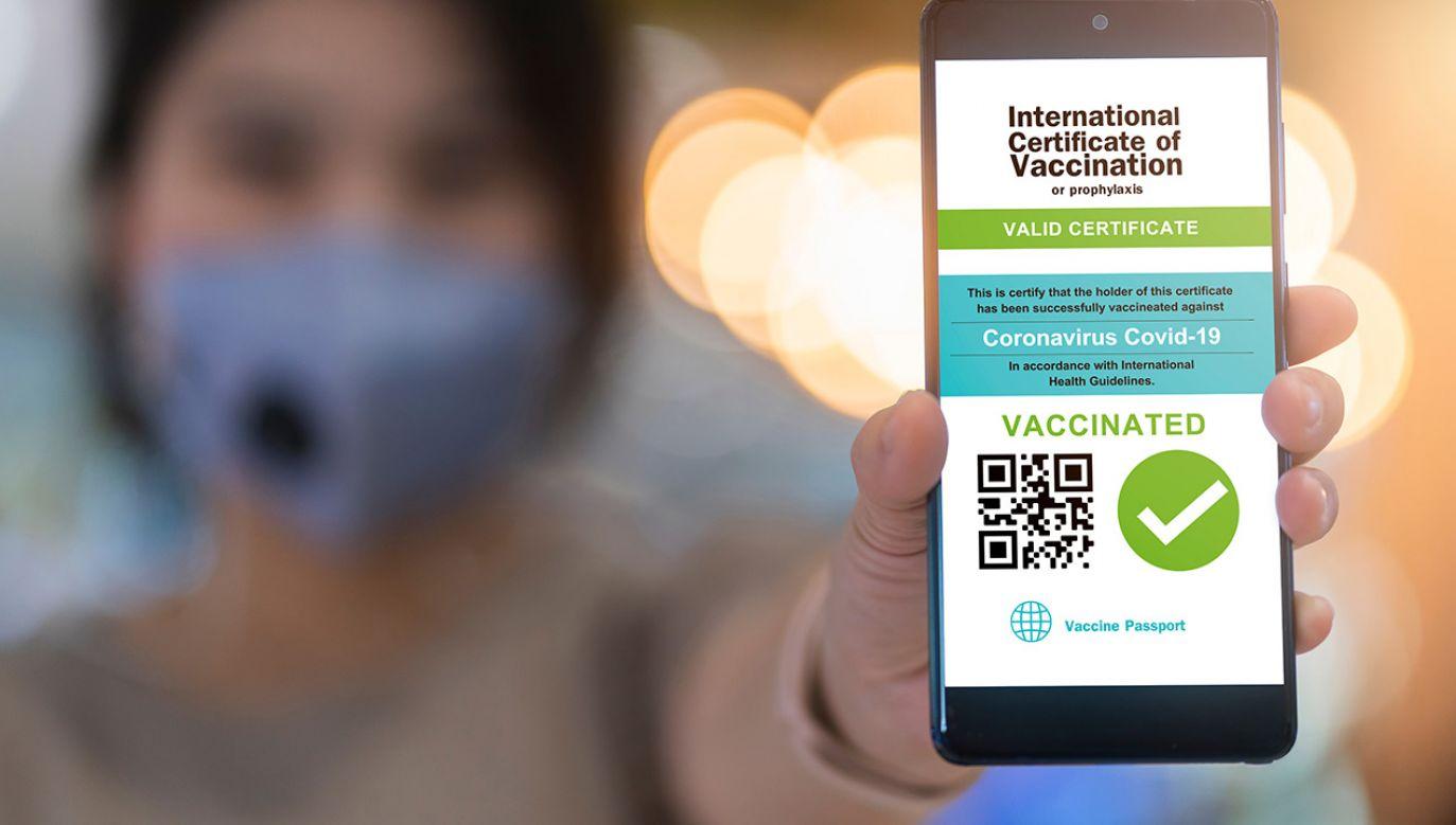 Na poziomie europejskim trwają analizy, czy istnieje możliwość przedłużenia certyfikatów szczepień (fot. Shutterstock)