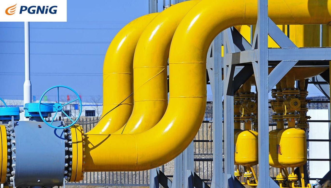 PGNiG wygrało przetarg na sprzedaż gazu ziemnego do Mołdawii (fot. Shutterstock)