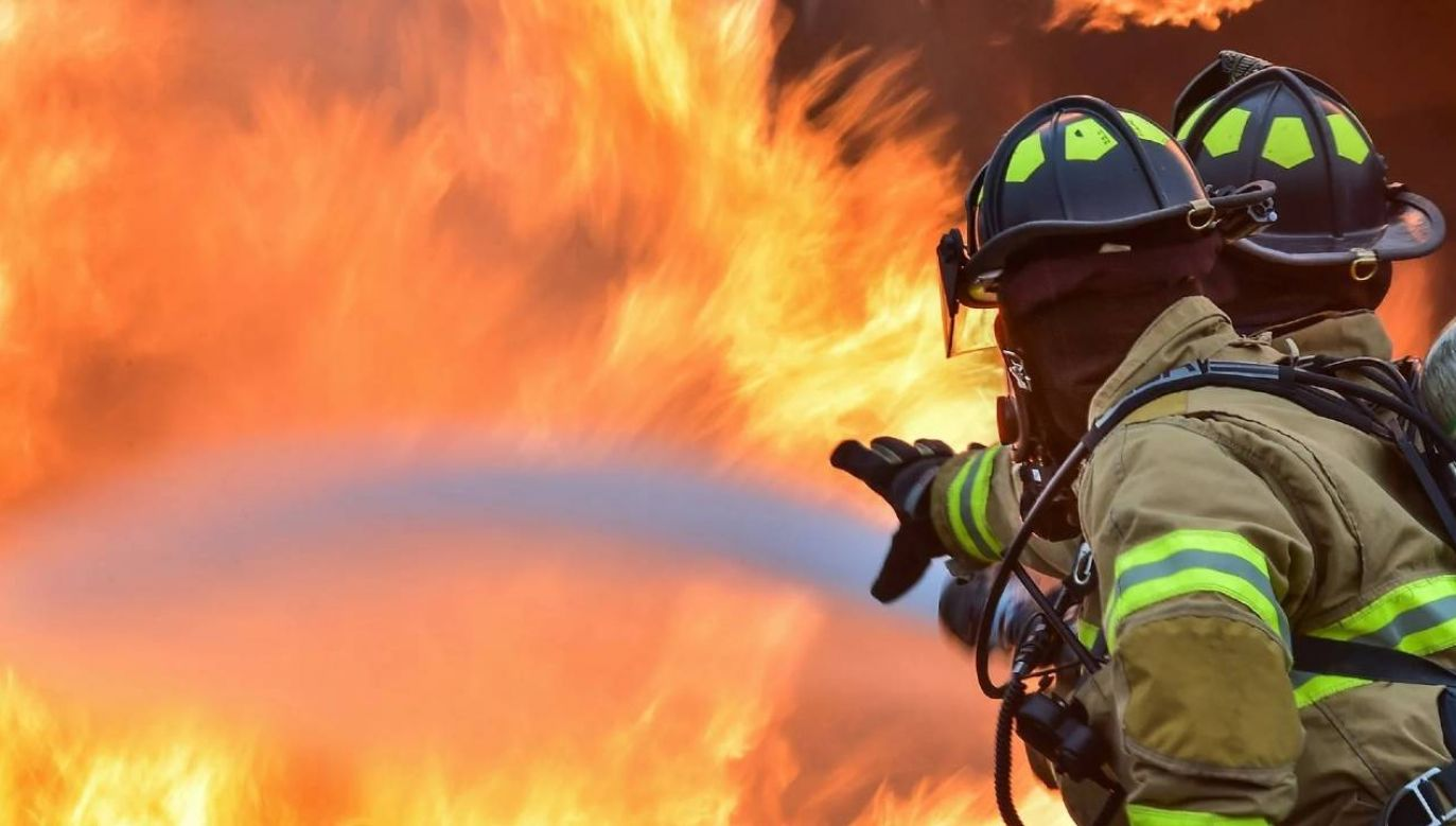 Zagrożenie pożarowe w Kalifornii jest wysokie (fot. Pexels)