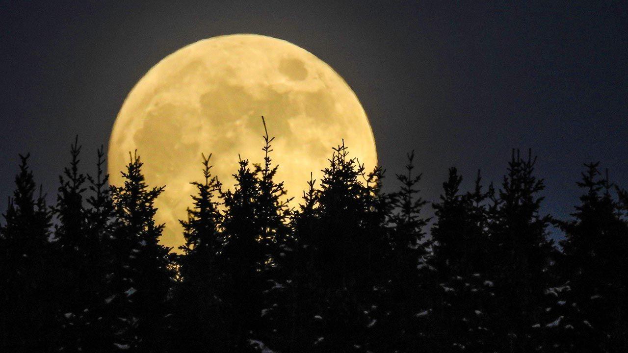 Każda pełnia Księżyca ma swoją nazwę. Skąd pochodzą? (fot. PAP/DPA)