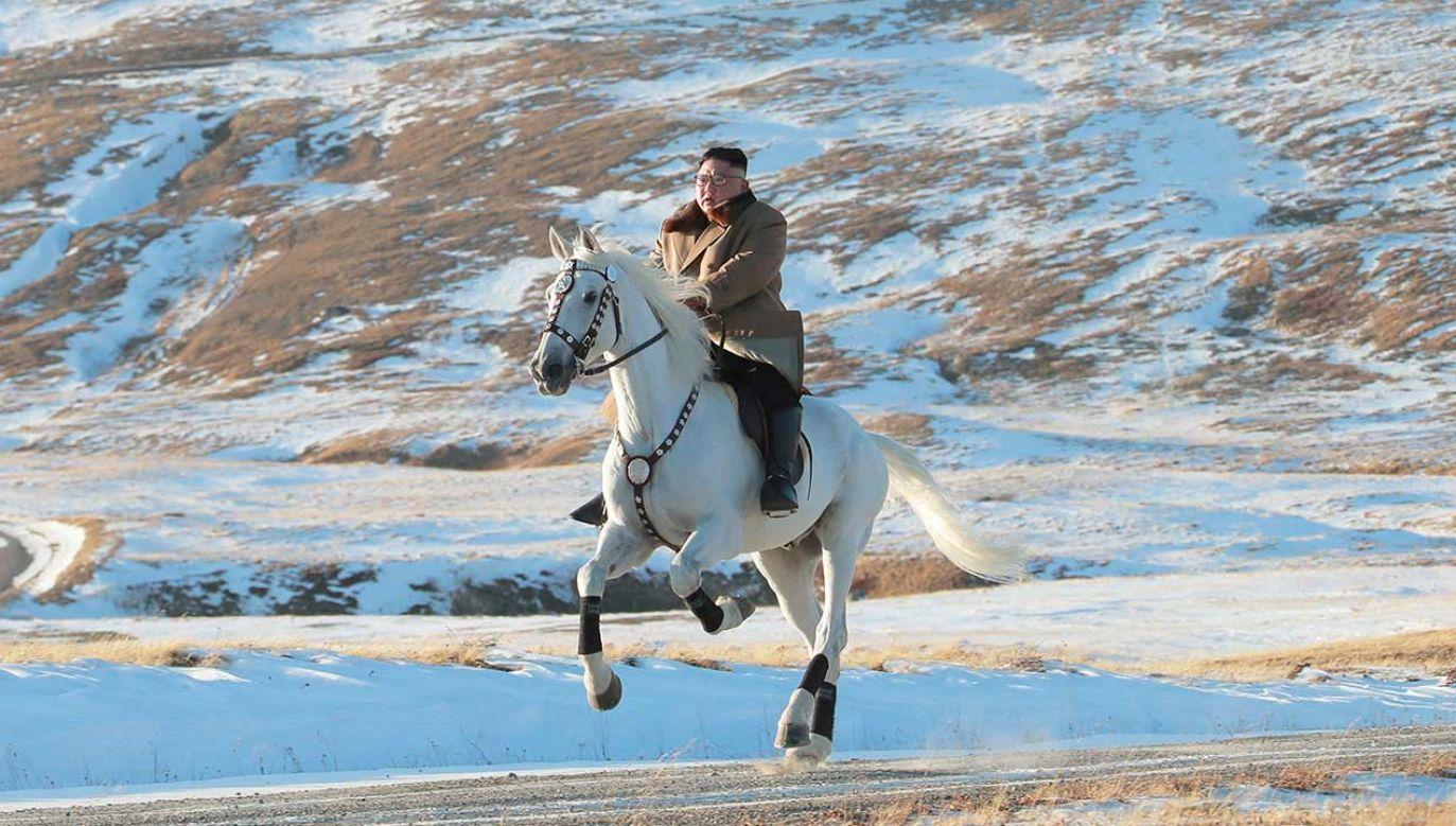 Biały koń zajmuje ważne miejsce w propagandzie dynastii Kimów (fot. REUTERS/KCNA)