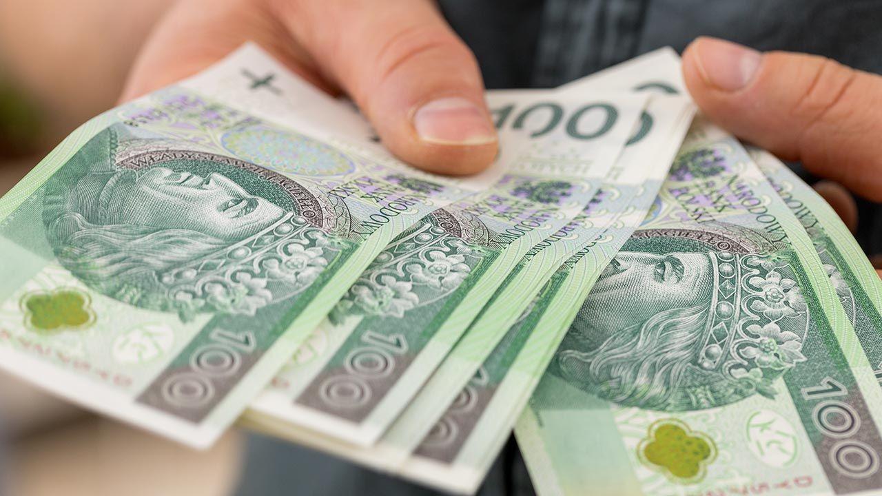 Wielkie korporacje powinny płacić podatki tam, gdzie zarabiają pieniądze (fot. Shutterstock/Andrzej Rostek)