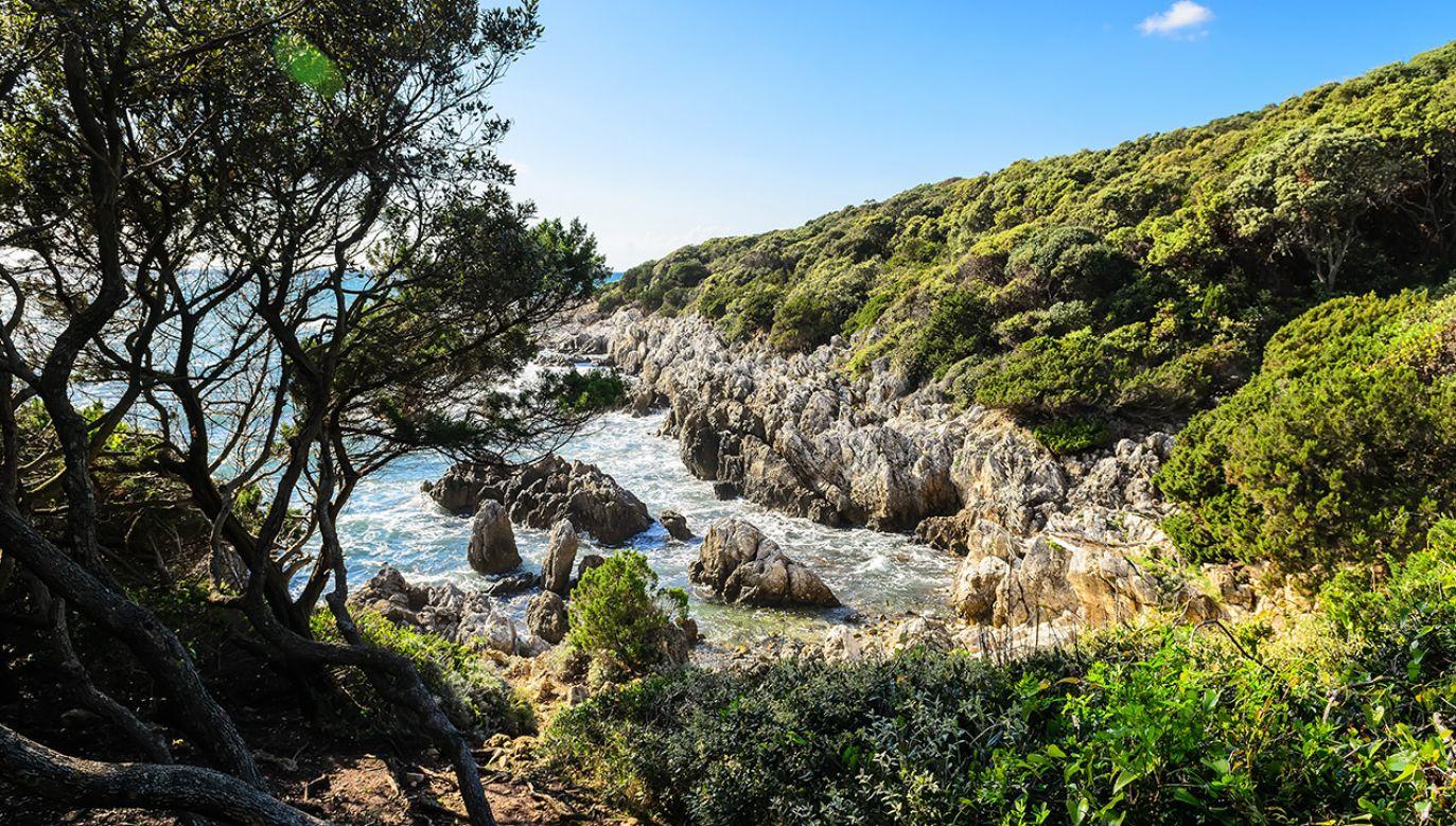 """Włoscy speleolodzy twierdzą, że w miejscowości San Felice Circeo na południe od Rzymu znajduje się grota opisana w """"Odysei"""" Homera (fot. Shutterstock/Sergey Berestetsky)"""