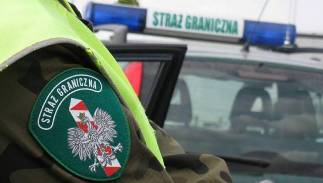 Towar znajdował się w samochodzie mieszkańca Łęknicy (fot. BOSG)