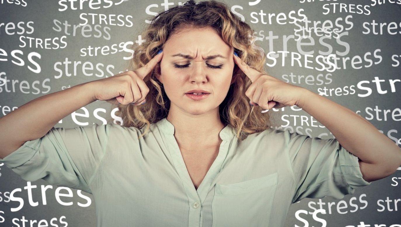 Istnieje kilka sposobów na wywołanie korzystnego stresu (fot. Shutterstock)