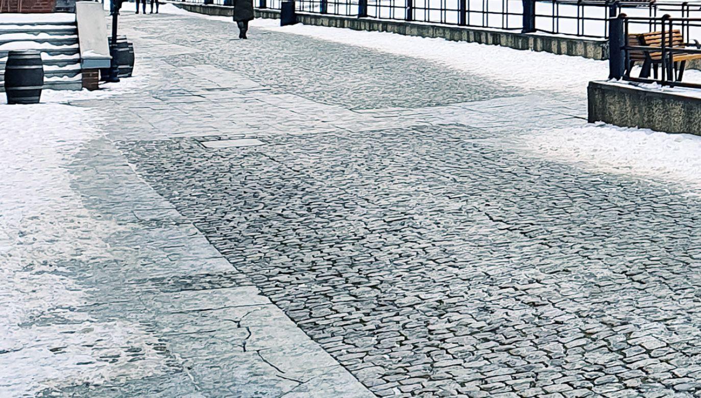 Długoterminowe prognozy wskazują, że fala mrozu powróci do Polski (fot. Shutterstock/Abrada)