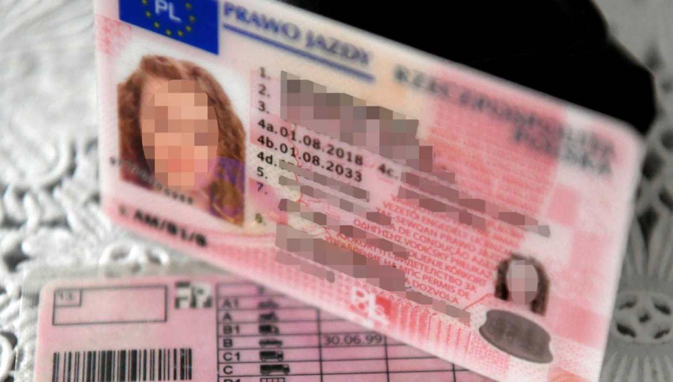 Od soboty prawo jazdy kierowca można zostawić w domu (fot. PAP/Darek Delmanowicz)