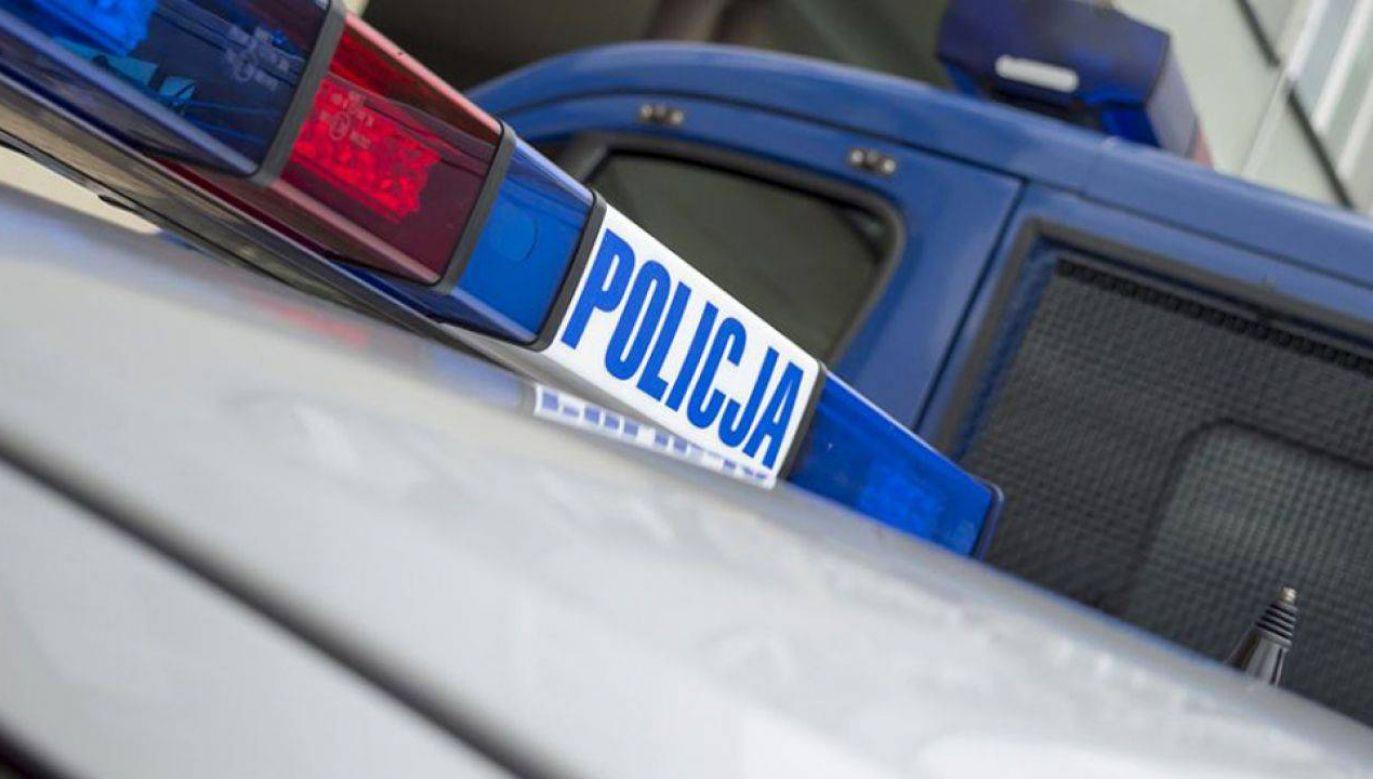 Zatrzymano jedną osobę (fot. tvp.info/Paweł Chrabąszcz)