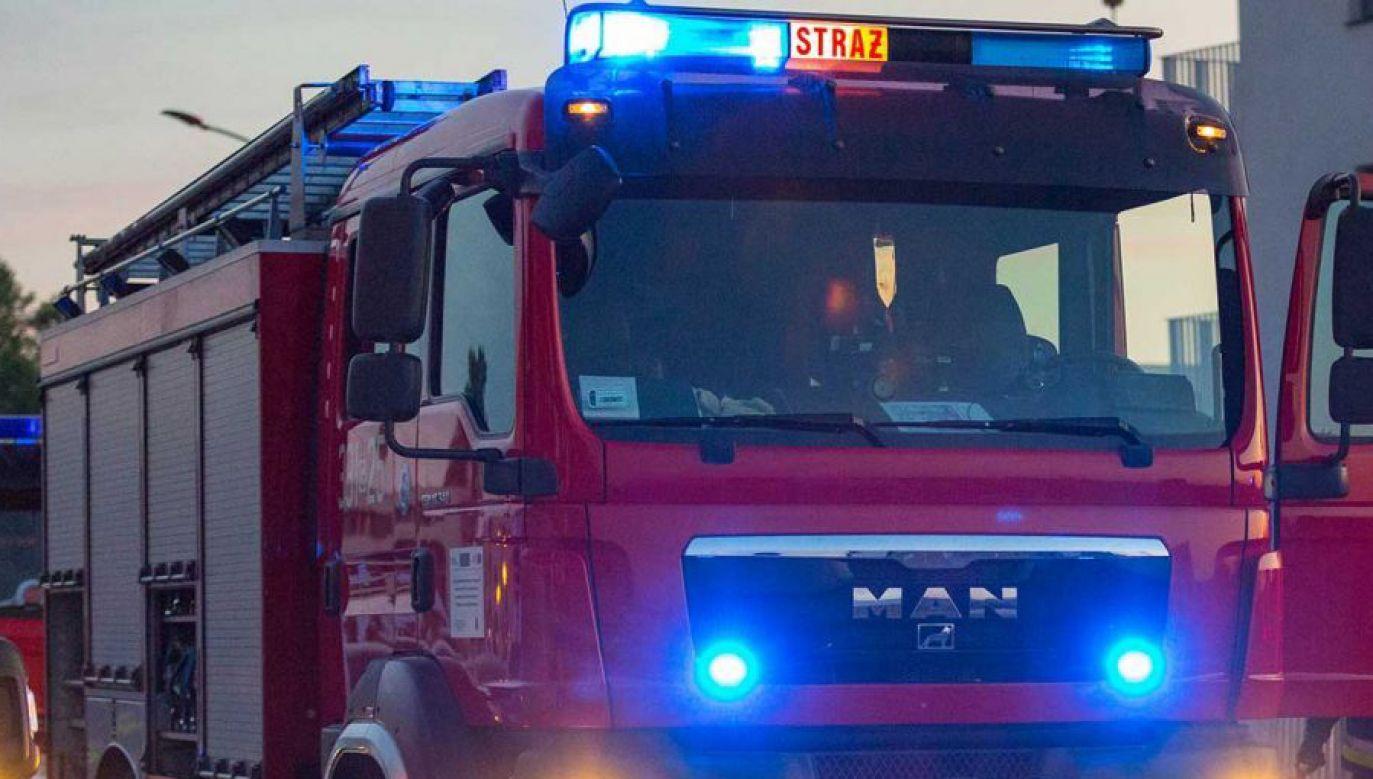 Mężczyznę wyciągnięto z szamba jeszcze przed przyjazdem straży pożarnej (fot. Shutterstock/Patryk Kosmider)
