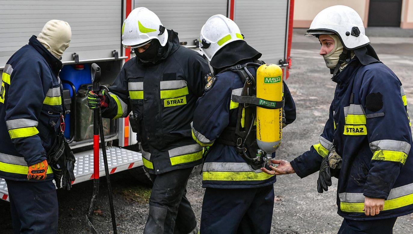 Na miejscu pracuje siedem zastępów straży pożarnej. (fot. PAP/Wojtek Jargiło)