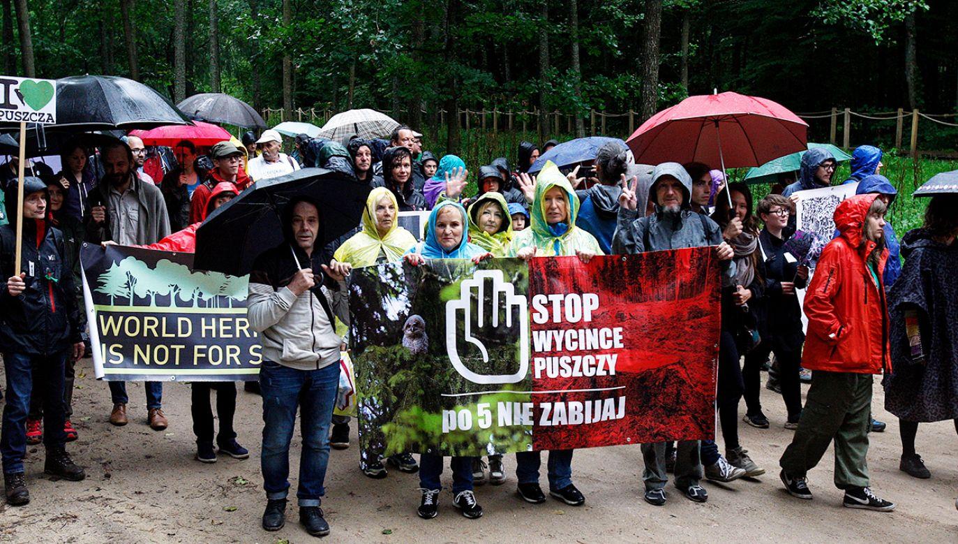Do ataku doszło w 2017 roku podczas protestów przeciwko wycinkom drzew w Puszczy Białowieskiej (fot. arch. PAP/Artur Reszko)