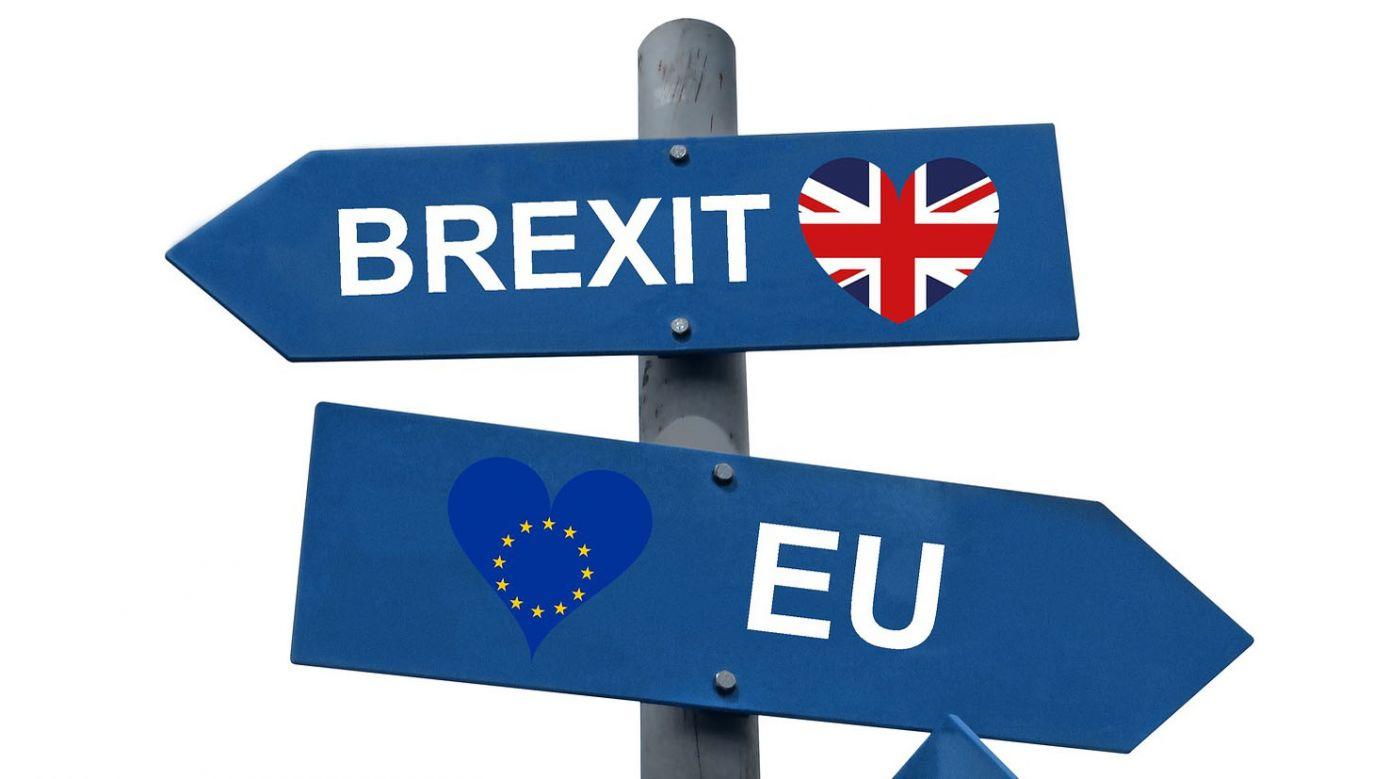 Twardy brexit staje się coraz bardziej prawdopodobny (fot. Pixabay)