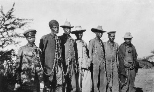Powstańcy Herrero pojmani przez Niemców (rok 1904/5). Fot. ullstein bild/ullstein bild via Getty Images