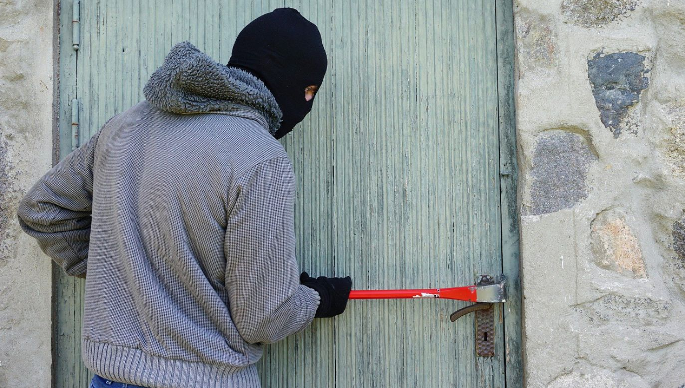 W 2019 r. w Mazowieckiem odnotowano mniej rozbojów, ale więcej przypadków kradzieży samochodów i oszustw (fot. Pixabay/TheDigitalWay)