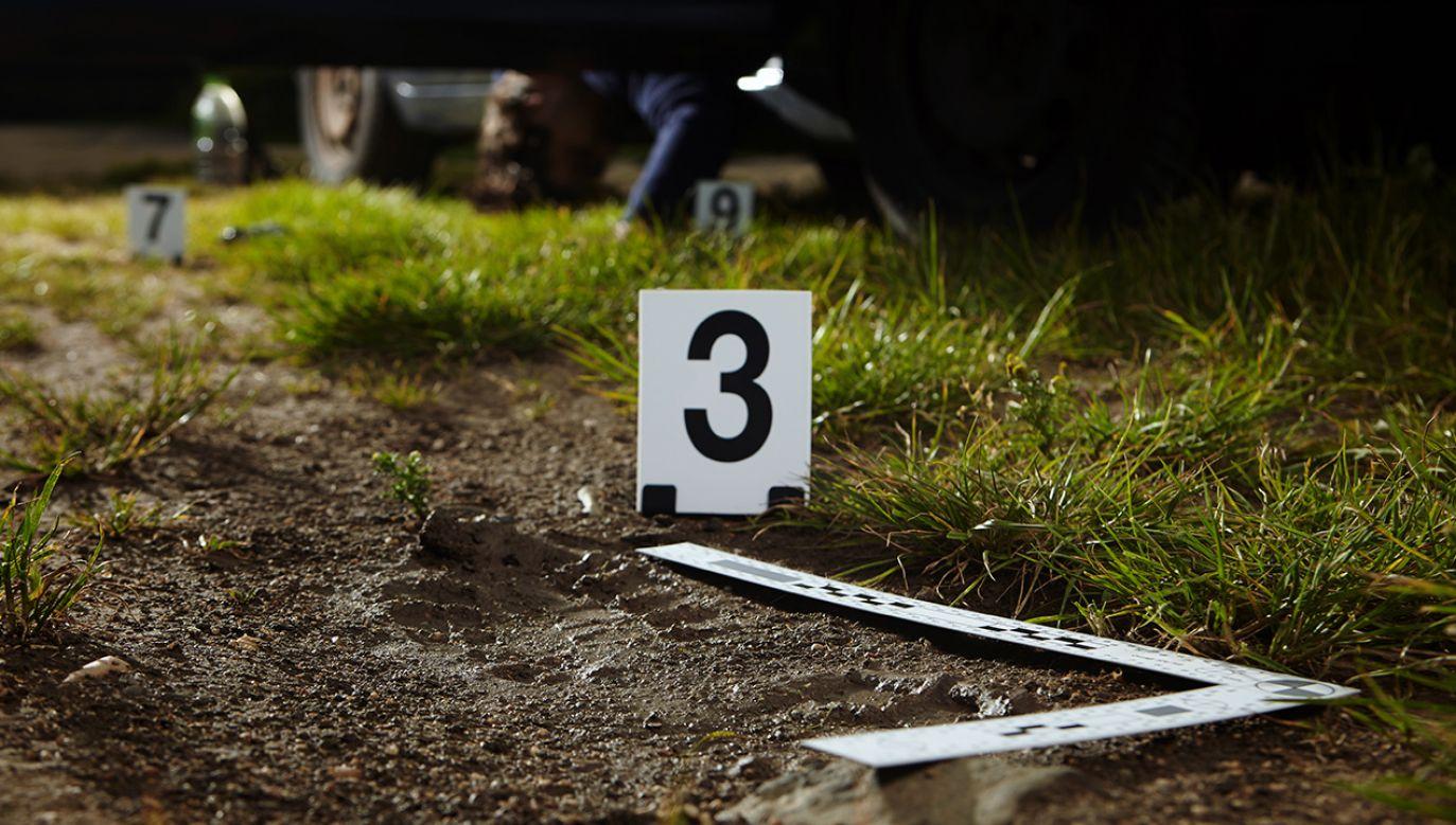 Szczątki zamordowanej kobiety odnaleziono po 19 latach (fot. Shutterstock/Couperfield)