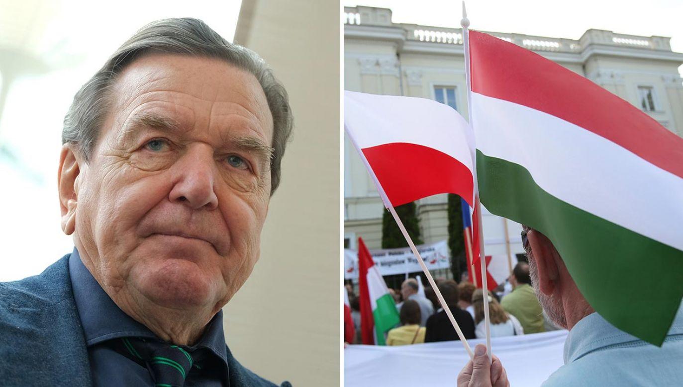 Gerhard Schroeder (fot. Sean Gallup/Getty Images; PAP/Leszek Szymański)