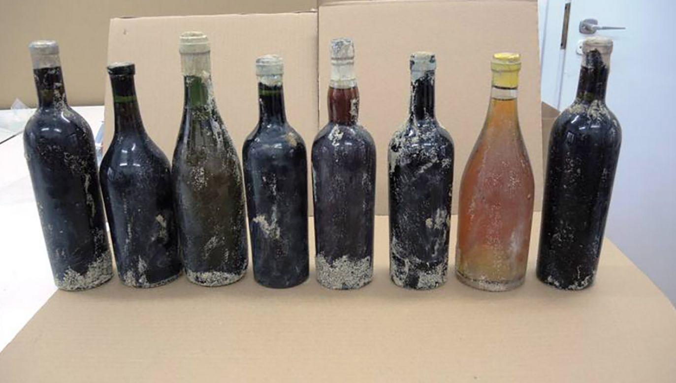 Wartość finansowa znaleziska nie jest duża, m.in. ze względu na utrudnioną identyfikację wina (fot. Muzeum Zamoyskich w Kozłówce)