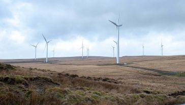 Mieszkańcy Żyznowa nie chcą farmy wiatrowej w sąsiedztwie (fot. Pixabay)