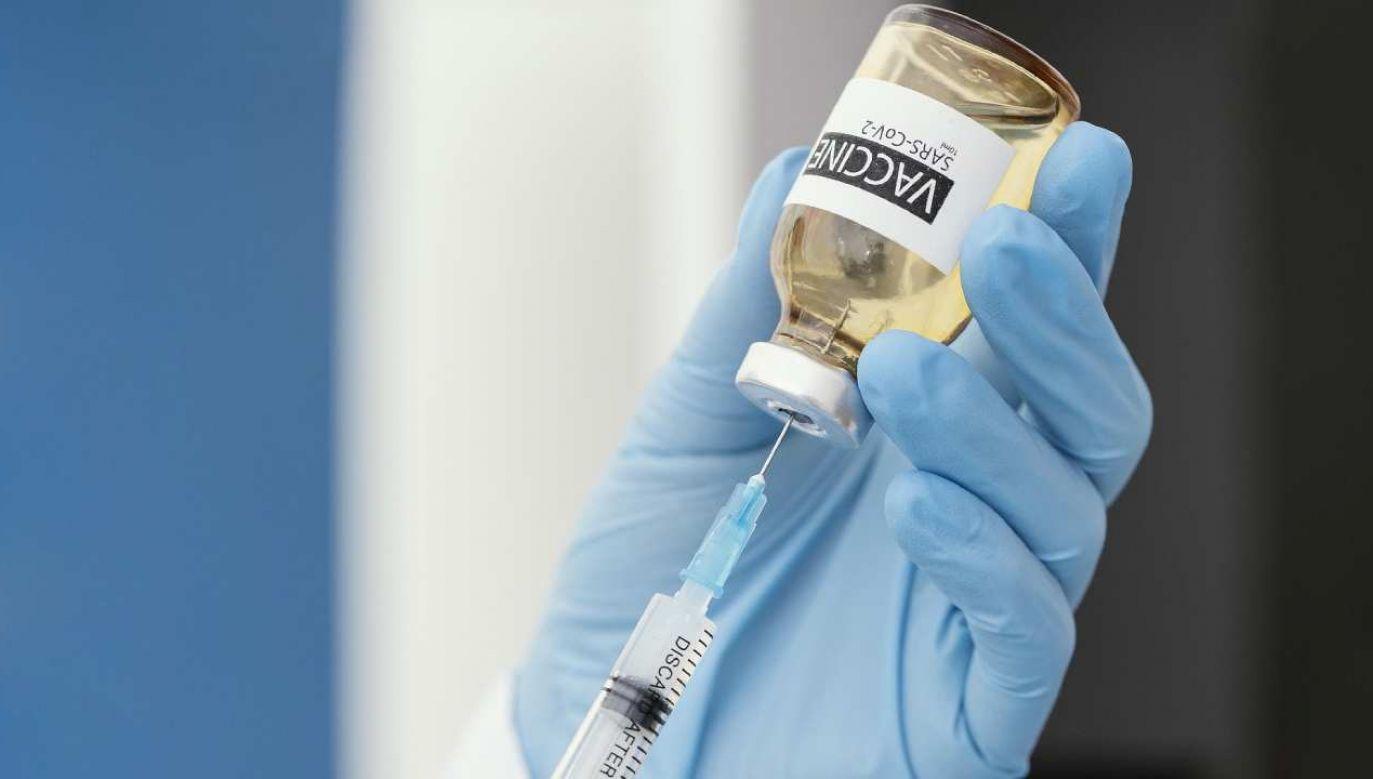 Do Polski dotarło 88 tys. dawek szczepionki AstraZeneca (fot. Pixabay/Ali Raza)