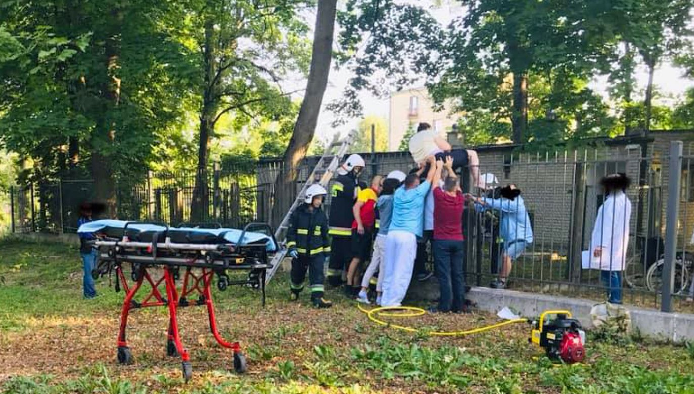 Akcja strażaków w parku w Morawicy (fot. Facebook/OSP KSRG Morawica)