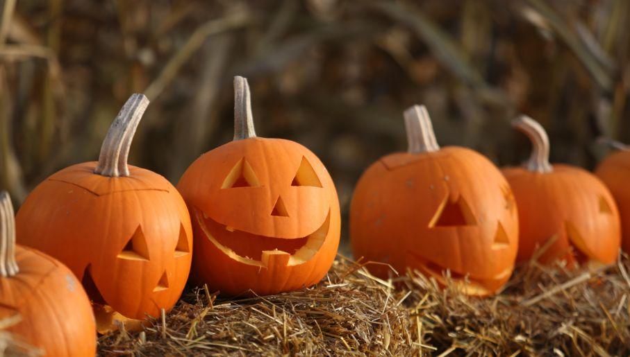 """Wydrążona w dyni """"głowa"""" to symbol Halloween (fot. PAP/Leszek Szymański)"""